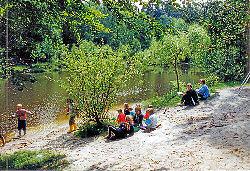 Strand und Liegewiese am Teich - Waldsch�nke & Pension Am Forsthaus das Paradies f�r Urlauber, Ferieng�ste und Erholungssuchende im Niederlausitzer Land